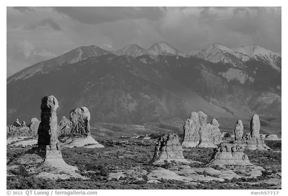 Fins and La Sal mountains. Arches National Park (black and white)
