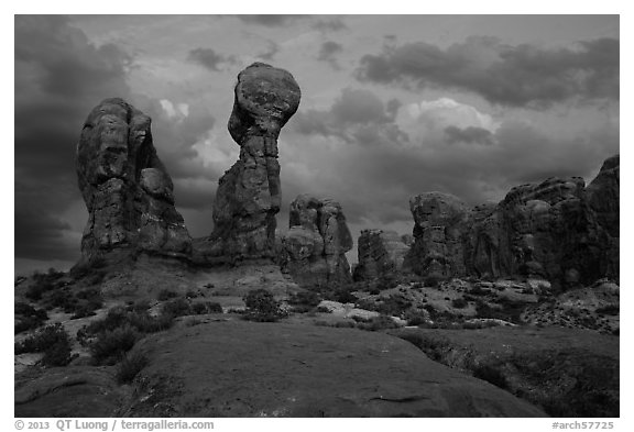 Garden of Eden at dusk. Arches National Park (black and white)