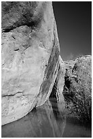 Sandstone cliffs reflected in stream, Courthouse Wash. Arches National Park, Utah, USA. (black and white)
