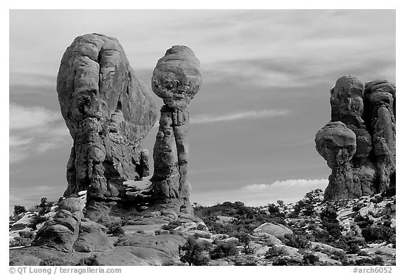 Balanced formations in Garden of Eden. Arches National Park (black and white)