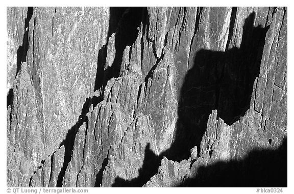 Detail of canyon wall from Kneeling camel view, North rim. Black Canyon of the Gunnison National Park (black and white)