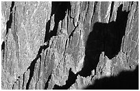Detail of canyon wall from Kneeling camel view, North rim. Black Canyon of the Gunnison National Park, Colorado, USA. (black and white)
