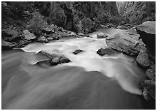 Gunisson river rapids near Narrows. Black Canyon of the Gunnison National Park, Colorado, USA. (black and white)