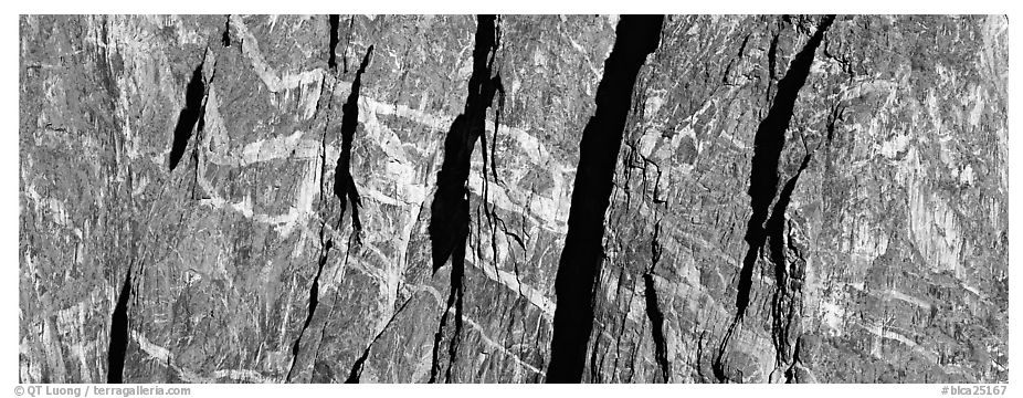 Crystalline marbled walls. Black Canyon of the Gunnison National Park (black and white)