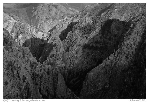 Canyon buttres from Tomichi Point. Black Canyon of the Gunnison National Park (black and white)