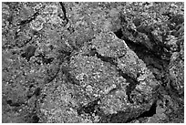 Gneiss and lichen. Black Canyon of the Gunnison National Park, Colorado, USA. (black and white)