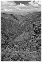 Sunset View. Black Canyon of the Gunnison National Park ( black and white)