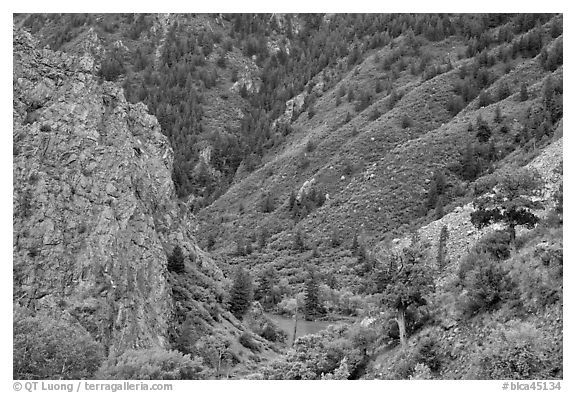 East Portal in spring. Black Canyon of the Gunnison National Park (black and white)