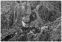 Gunnison River in autumn from above. Black Canyon of the Gunnison National Park, Colorado, USA. (black and white)