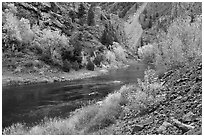 Gunnison river in fall, East Portal. Black Canyon of the Gunnison National Park ( black and white)