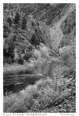 Gunnison river in autumn, East Portal. Black Canyon of the Gunnison National Park (black and white)