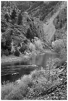 Gunnison river in autumn, East Portal. Black Canyon of the Gunnison National Park ( black and white)