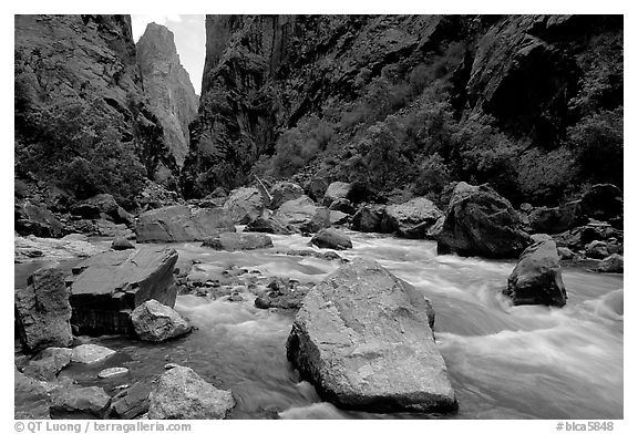 Boulders in  Gunisson river near the Narrows. Black Canyon of the Gunnison National Park (black and white)