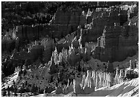 Shadows and lights, Bryce Amphitheater from Sunrise Point, morning. Bryce Canyon National Park, Utah, USA. (black and white)