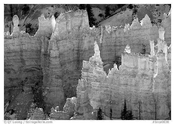 Backlit Hoodoos, mid-morning. Bryce Canyon National Park (black and white)