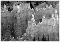 Backlit Hoodoos, mid-morning. Bryce Canyon National Park, Utah, USA. (black and white)
