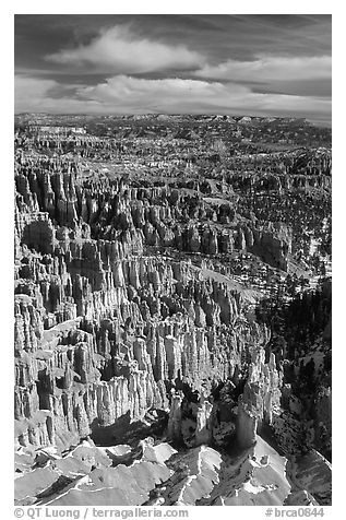 Silent City in Bryce Amphitheater from Bryce Point, morning. Bryce Canyon National Park (black and white)