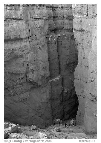 Navajo Trail descending between Hoodoos. Bryce Canyon National Park (black and white)