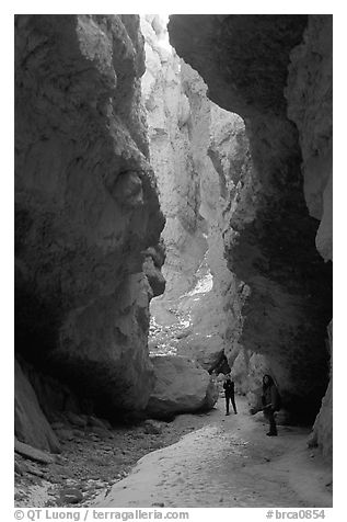 Hikers in Wall Street Gorge. Bryce Canyon National Park (black and white)
