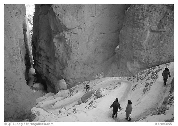 Hikers descending trail in Wall Street Gorge. Bryce Canyon National Park (black and white)