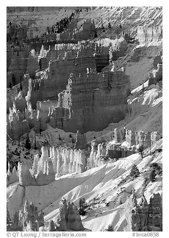 Bryce Amphitheater from Sunrise Point, winter sunrise. Bryce Canyon National Park (black and white)