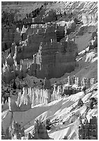 Bryce Amphitheater from Sunrise Point, winter sunrise. Bryce Canyon National Park, Utah, USA. (black and white)