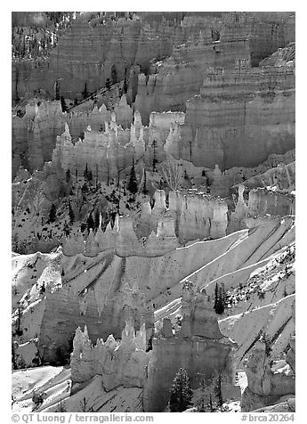 Sandstone rock pillars seen from Sunrise Point in winter, mid-morning. Bryce Canyon National Park (black and white)