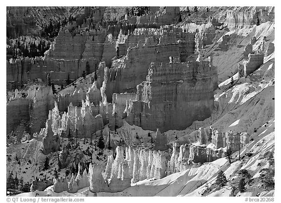 Rock spires and snow  seen from Sunrise Point in winter, early morning. Bryce Canyon National Park (black and white)