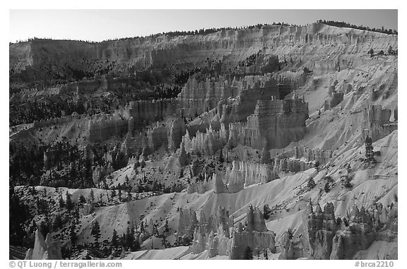 Bryce amphitheater from Sunrise Point, dawn. Bryce Canyon National Park (black and white)