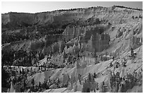 Bryce amphitheater from Sunrise Point, dawn. Bryce Canyon National Park, Utah, USA. (black and white)