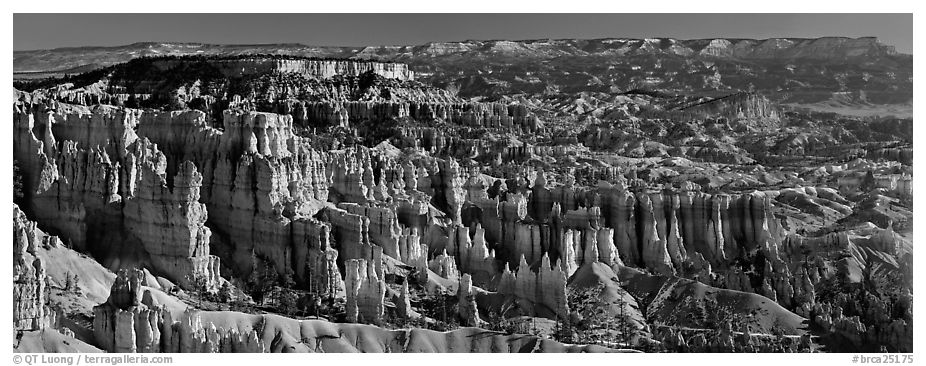 Densely aligned pinnacles in horseshoe-shaped amphitheaters along edge of Pausaugunt Plateau. Bryce Canyon National Park (black and white)