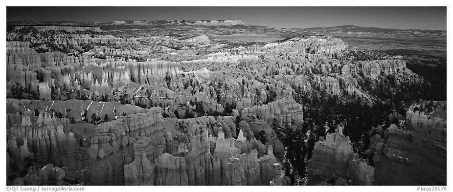 Innumerable brighly colored free-standing hoodoos aligned in amphiteater. Bryce Canyon National Park (black and white)