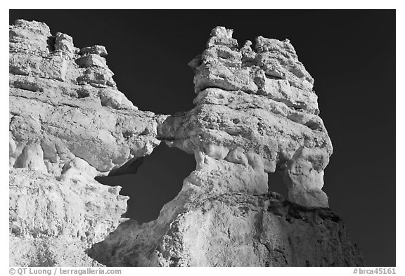 Hoodoos and windows. Bryce Canyon National Park (black and white)