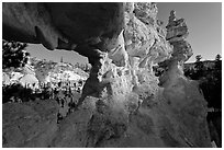 Water Canyon from hoodoo window. Bryce Canyon National Park, Utah, USA. (black and white)