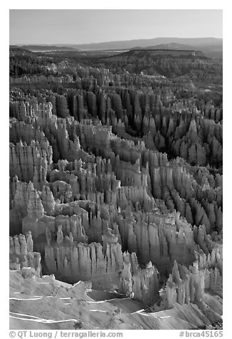 Tightly packed hoodoos from Bryce Point, sunrise. Bryce Canyon National Park (black and white)