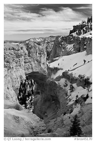 Pink limestone arch. Bryce Canyon National Park (black and white)