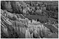 Glowing hoodoos in Queen's garden. Bryce Canyon National Park ( black and white)
