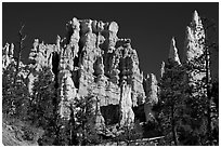 Hoodoos capped with magnesium-rich limestone. Bryce Canyon National Park, Utah, USA. (black and white)