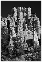 Hoodoos capped with dolomite. Bryce Canyon National Park, Utah, USA. (black and white)