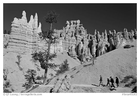 Hiking trail below hoodoos. Bryce Canyon National Park (black and white)
