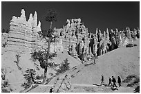 Hiking trail below hoodoos. Bryce Canyon National Park, Utah, USA. (black and white)