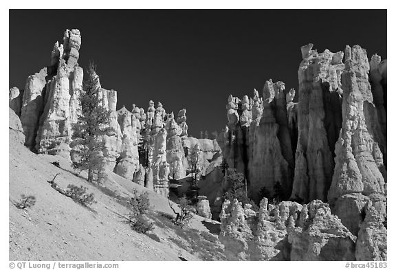 Hoodoos seen from below. Bryce Canyon National Park (black and white)