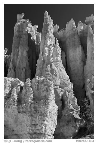 Weathered Claron formation limestone. Bryce Canyon National Park (black and white)