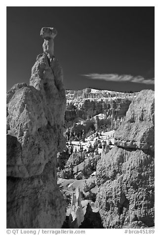 Hoodoos capped by dolomite rocks and amphitheater. Bryce Canyon National Park (black and white)