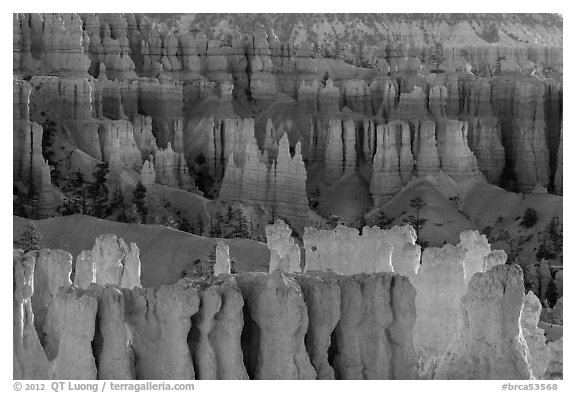 Rows of hoodoos. Bryce Canyon National Park (black and white)