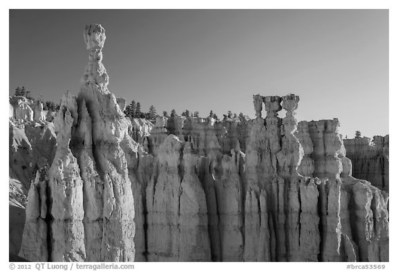 Thor Hammer and Temple of Osiris. Bryce Canyon National Park (black and white)