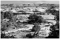 View with bare limestone table, canyons and mountains, the Needles. Canyonlands National Park, Utah, USA. (black and white)