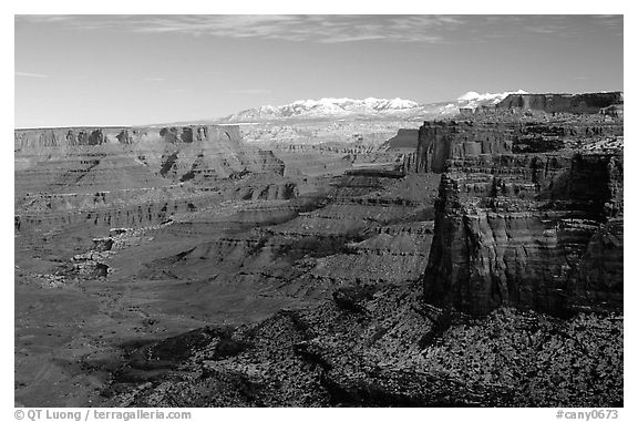 Buck Canyon overlook and La Sal mountains, Island in the sky. Canyonlands National Park (black and white)