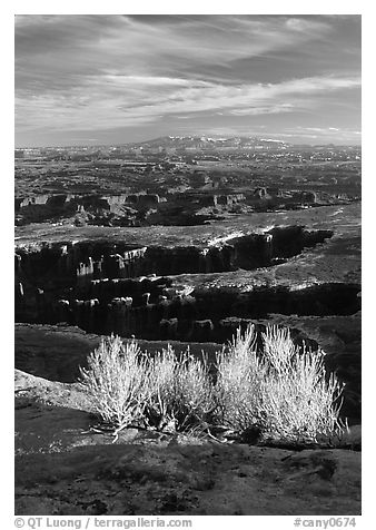 Monument Basin from Grand view point, Island in the sky. Canyonlands National Park (black and white)