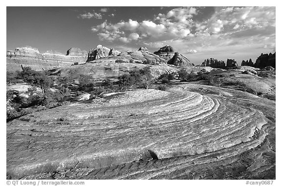 Circular sandstone striations near Elephant Hill, the Needles, late afternoon. Canyonlands National Park (black and white)